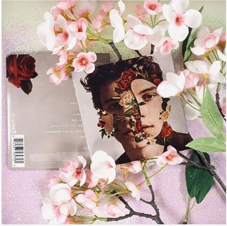 Shawn Mendes | Cd Deluxe Digipack/target