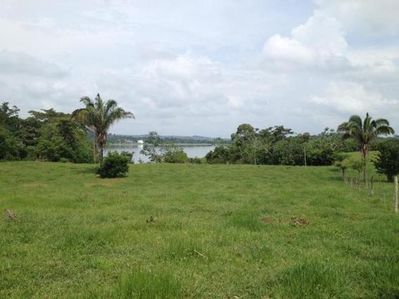 Vendo Finca Con Potencial Frente Al Lago Gatún 19-8695**gg**