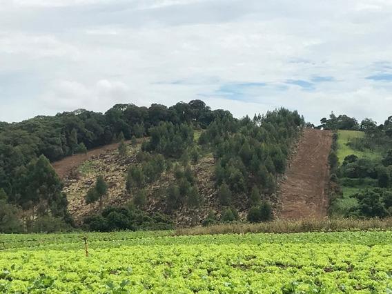 Rd Vendo Terreno Barato De Mais