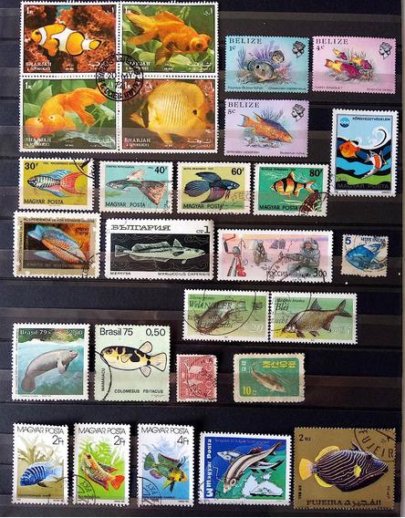 Fa 007 Selo Fauna Peixe Belize Russia Brasil