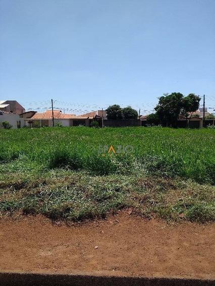 Terreno Residencial À Venda, Jardim São Paulo, Rio Claro. - Te0034