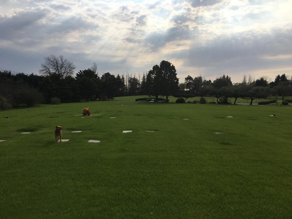 Venta Parcela Cementerio Jardin Bella Vista Irusta 5600