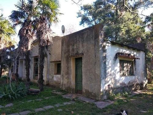 Imagen 1 de 18 de Quinta En Venta En San Vicente