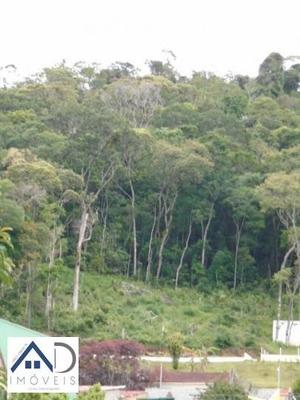 Terreno Para Venda Em Nova Friburgo, Mury - 153