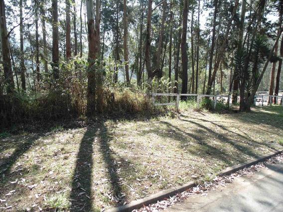 Terreno Comercial - Jardim Itaquiti - Ref: 66991 - V-66991