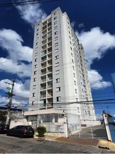 Imagem 1 de 19 de Apartamento A Venda No Parque Boturussu, São Paulo - V3072 - 69394326