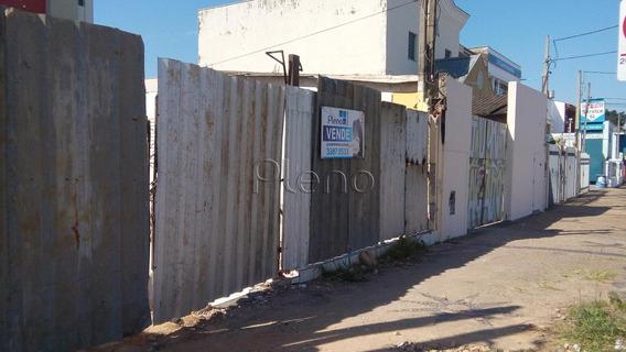 Terreno Á Venda E Para Aluguel Em Ponte Preta - Te015308