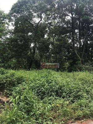 Terreno À Venda, 4030 M² Por R$ 450.000 - Jardim Arujá - Arujá/sp - Te0653