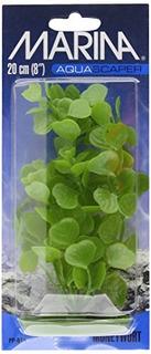 Planta Aquascaper Medium Moneywort 8 Pulgadas