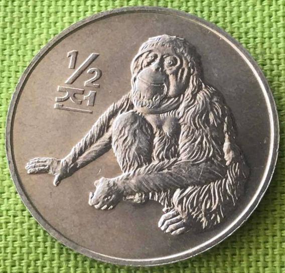 Corea Del Norte : Moneda De 1/2 Chon 2002 S/c Orangután