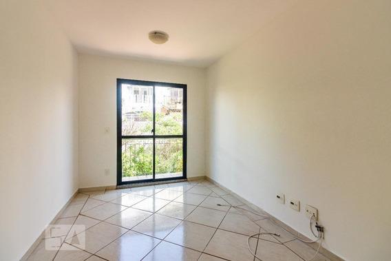 Apartamento Para Aluguel - Butantã, 2 Quartos, 55 - 893102541