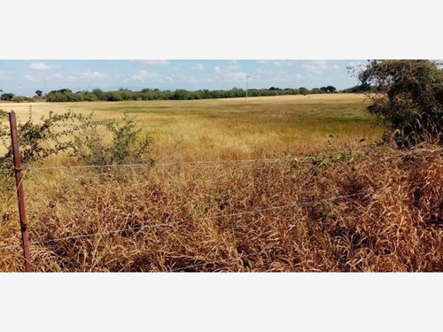 Imagen 1 de 4 de Terreno Industrial En Venta Huinala