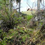 Terreno Residencial À Venda, Colinas Do Ermitage (sousas), Campinas. - Te0461