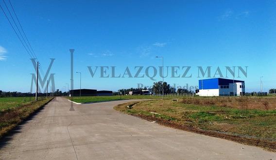 Galpón En Venta- Parque Industrial