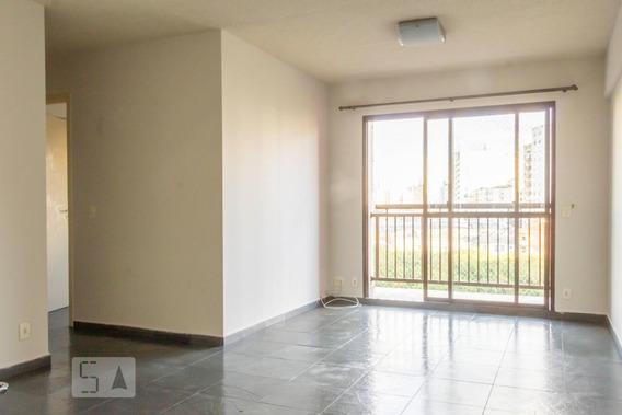 Apartamento Para Aluguel - Bom Retiro, 3 Quartos, 94 - 893109424