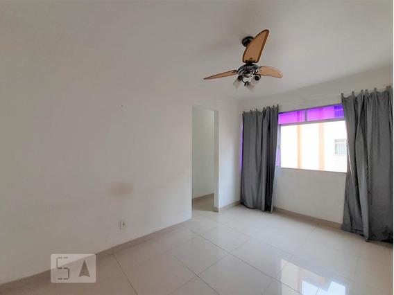 Apartamento Para Aluguel - Piedade, 3 Quartos, 65 - 893033612