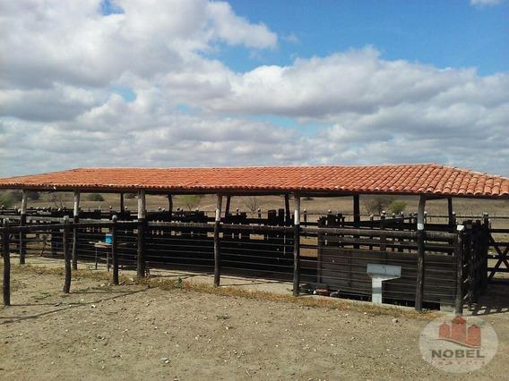 Fazenda Localizado(a) No Bairro Zona Rural Em Feira De Santana / Feira De Santana - 3570