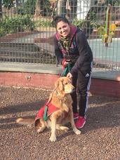Paseos Caninos Villa Del Parque / Devoto / Montecastro