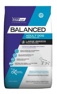 Vitalcan Balanced Adulto Razas Grandes X 15 Kg