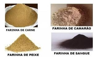 Atrativos De Pesca (farinha De Peixe, Sangue, Camarão,carne)