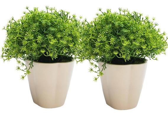 Plantas (2) Verde En Maceta Cesped Silvestre Art. De 18 Cm.