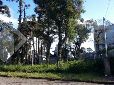 Terreno - Planalto - Ref: 190698 - V-190698