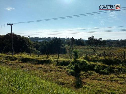 Imagem 1 de 15 de Área À Venda, 68821 M² Por R$ 9.800.000,00 - Planta Boros - Colombo/pr - Ar0003