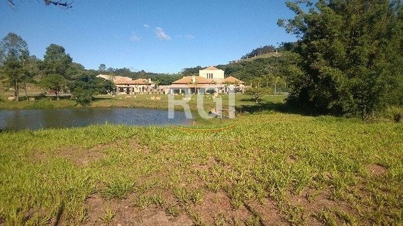 Terreno Em Vila Nova - Lp995