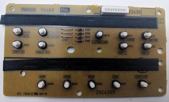 Placa C/ Botões Teclado Yamaha E253 Yg460 Zn24300