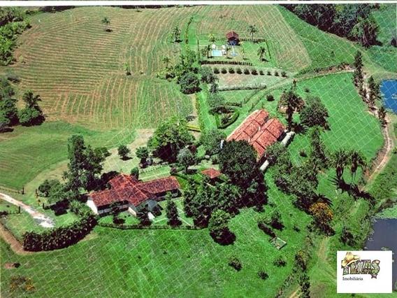 Fazenda Para Venda - Fa00001 - 31950013