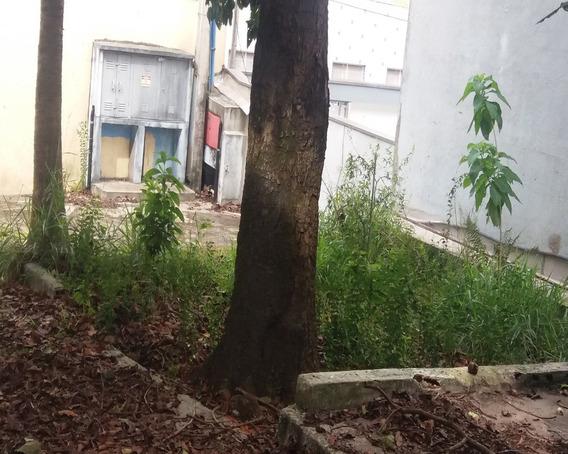 Galpao Para Venda E Locação Vila Bela, São Paulo 250,00 Construída, 450,00 Total - Gl00001 - 4576626