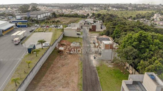Terreno À Venda, 139 M² Por R$ 125.000,00 - Braga - São José Dos Pinhais/pr - Te0051