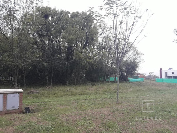 Terreno En Venta Interno - Barrio Cerrado San Matías Escobar