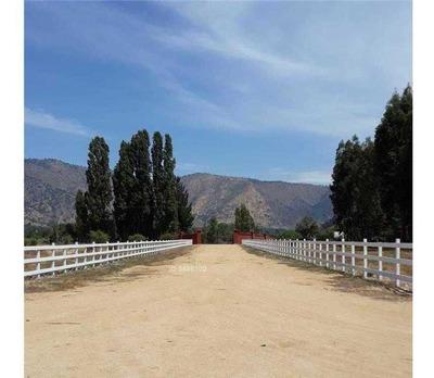 Camino Rinconada Peralillo Con Camino El Olivar