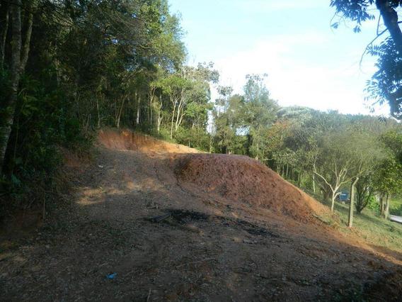 Terreno Rural À Venda, Cézar De Souza, Mogi Das Cruzes. - Te0278