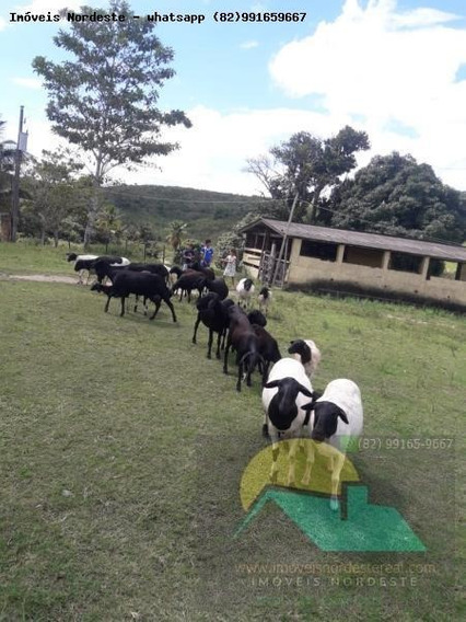 Fazenda Para Venda Em Matriz De Camaragibe, Zona Rural - Fz-024