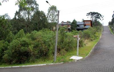 Terreno À Venda, 800 M² Por R$ 420.000 - Vale Das Colinas - Gramado/rs - Te0504