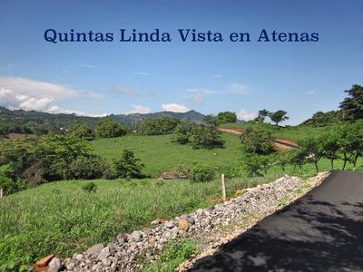 Quintas Linda Vista En Atenas Planas Y Con La Mejor Vista