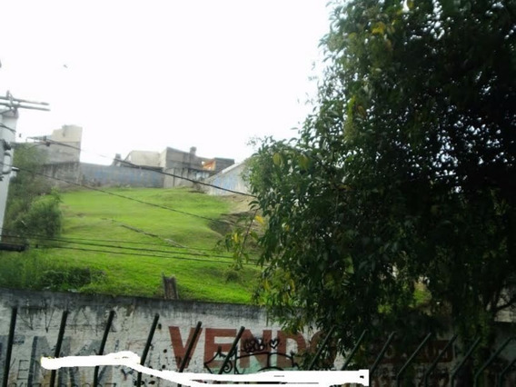 Terreno - Baeta Neves - Ref: 1070 - V-3098