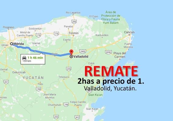 Remate De Terrenos En Valladolid 2has A Precio De 1ha