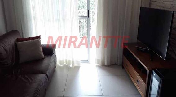 Apartamento Em São Lucas - São Paulo, Sp - 317090