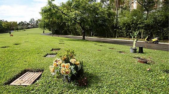 Jazigo Cemitério Morumbi (área Nobre / 3 Gavetas)