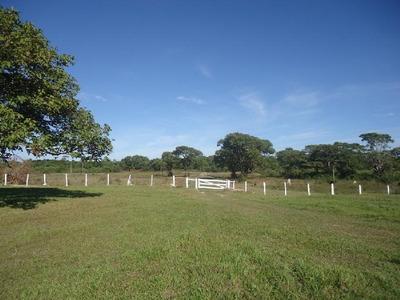 Fazenda Em Sandolândia - To, P/ Pecuária - 213