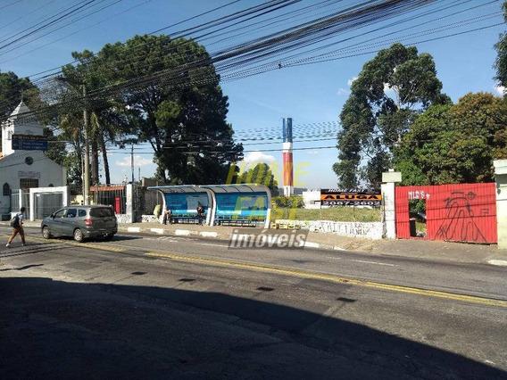 Terreno Comercial Para Locação, Macedo, Guarulhos. - Te0098