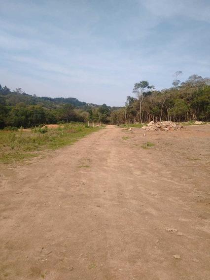 L.s Terrenos Com Represa Proxima E Muito Ar Puro