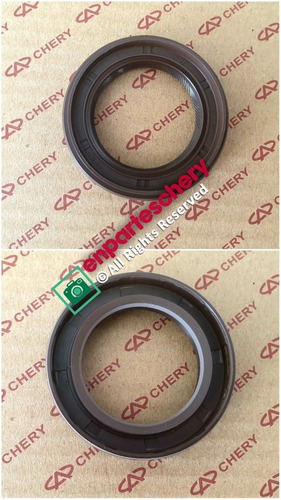 Estopera Copa Caja Triceta Chery Orinoco A520 Tiggo 5 Verdes