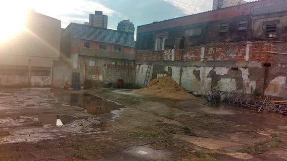 Terreno Para Alugar, 1500 M² Por R$ 6.000,00/mês - Santana - São Paulo/sp - Te0212