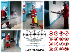 Fumigación Control Integral De Plagas