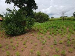 Fazenda A Venda Dupla Aptidão Em Duere - To - 1064