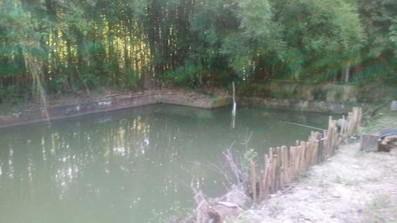 Chacara Com Tres Casas Pomar Lago E Area Para Festa. 1550 Mt